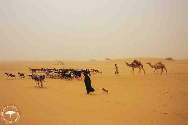 Comment s'appellent les ressortissants de la Mauritanie ?
