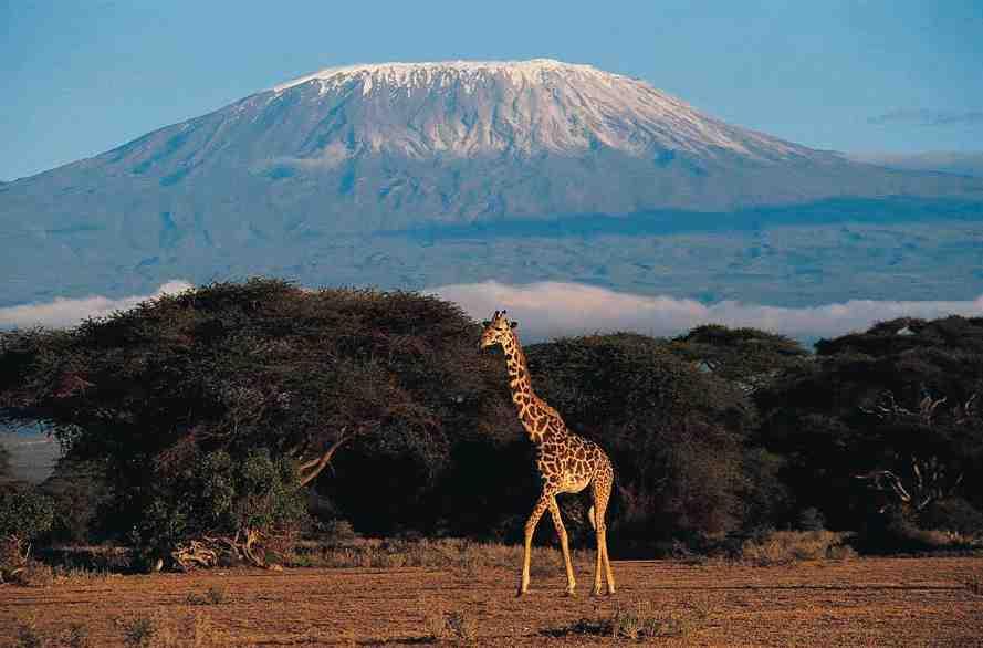 Est-il dangereux d'aller en Tanzanie ?