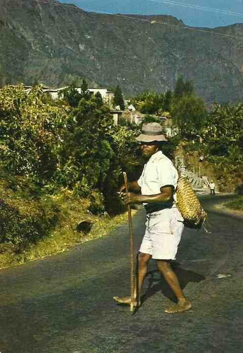Vivre en  La Réunion