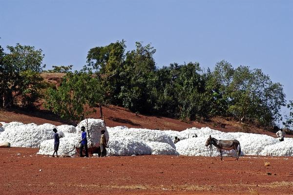 enfants pauvres qui travaille au Burkina fasso